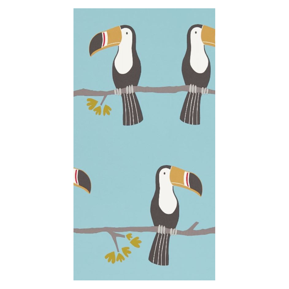 Tapeta Terry Toucan